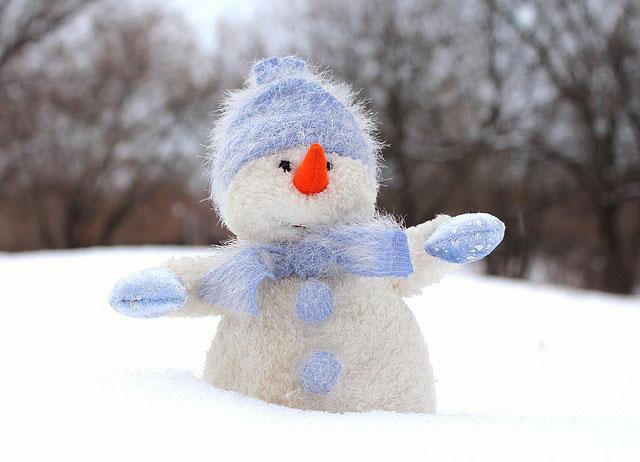 Зима, новогодние каникулы